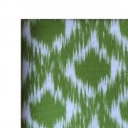 web verde manzanabig
